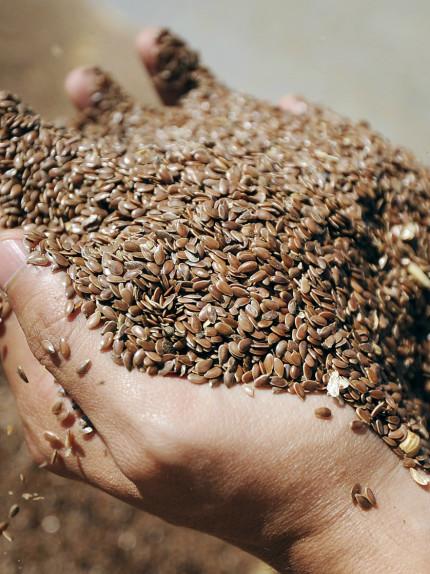 Olio di semi di lino e semi di lino, dalla cucina alla bellezza
