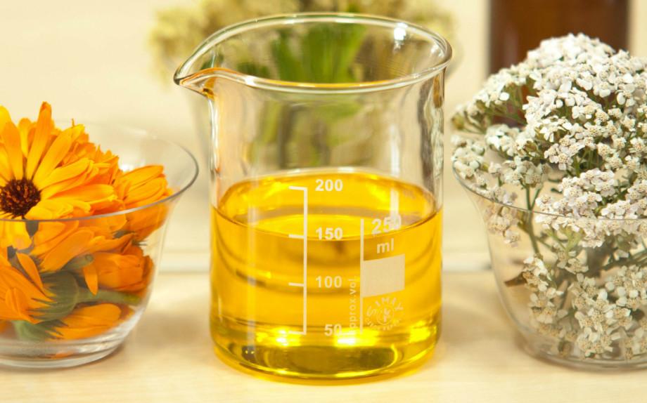 Decottopia, le piante officinali che portano benessere al corpo