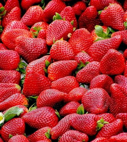 strawberries-99551_640
