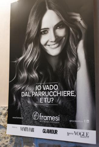 framesi4