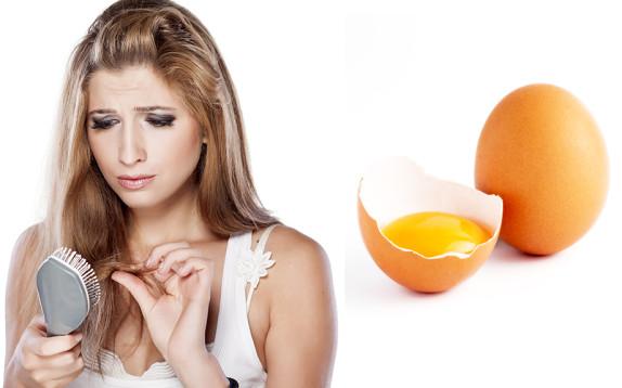 Lo dimostra un nuovo studio  l uovo di gallina contiene un fattore chiave  per la crescita dei capelli. Un team di ricercatori diretti dallo scienziato  ... c3330231bae9